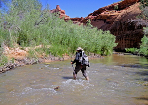 Escalante River Crossing