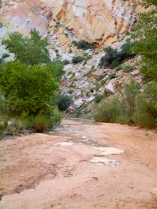 Hackberry Canyon Water